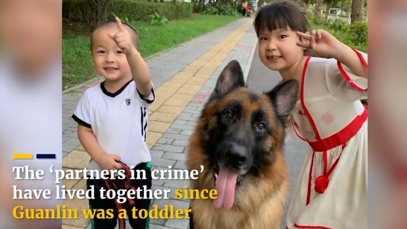 Video: Chú chó béc-giê cực kỳ thông minh nhận đồ và canh chừng cho bé gái