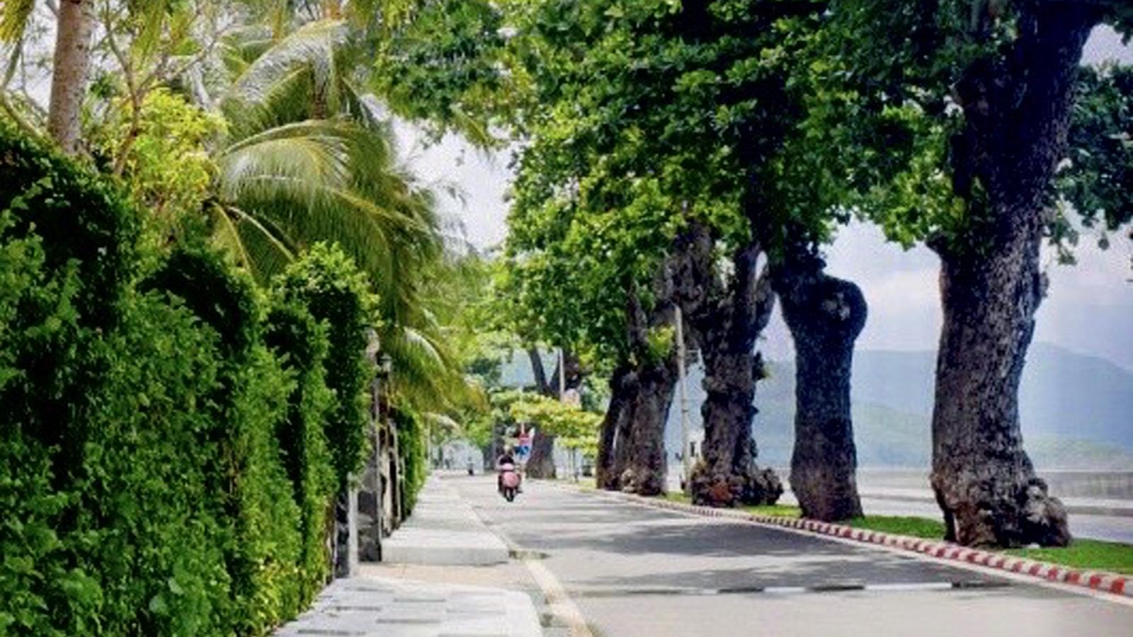 Thẩm tra vụ đấu giá khu đất gần 80.000 m2 tại Côn Đảo
