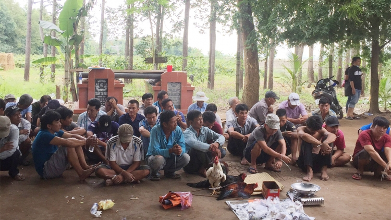Bắt giữ 37 đối tượng đá gà ăn tiền tại An Giang