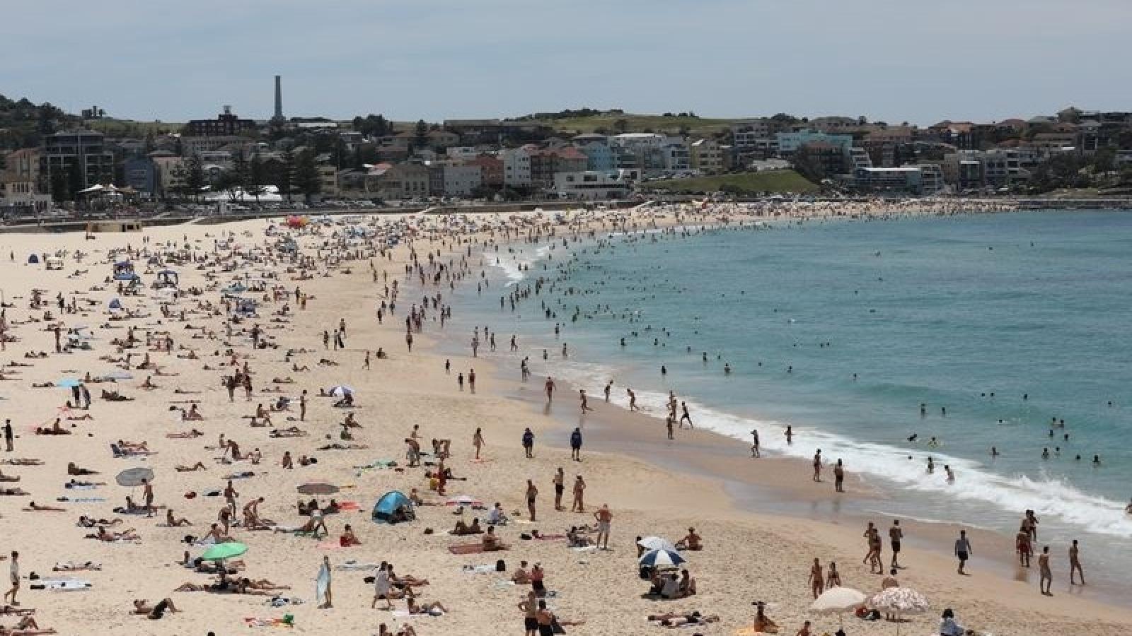 Sydney (Australia) đang trải qua nhữngngày nóng nhất trong 80 năm