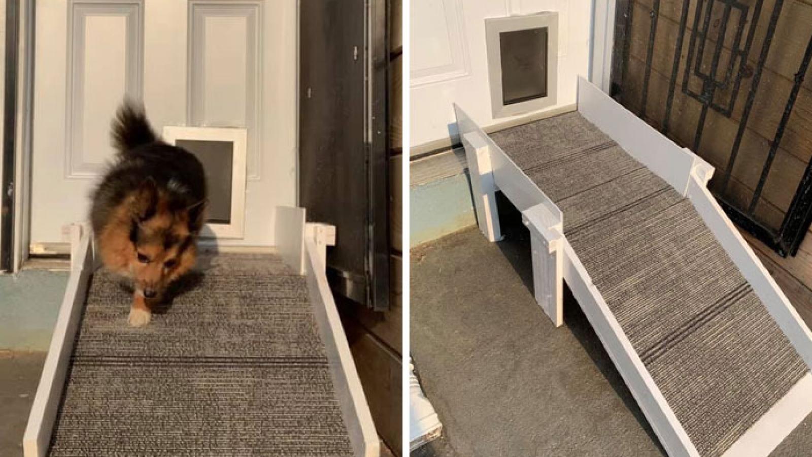 Những thiết kế nhà ấm cúng và xinh xắn dành riêng cho thú cưng