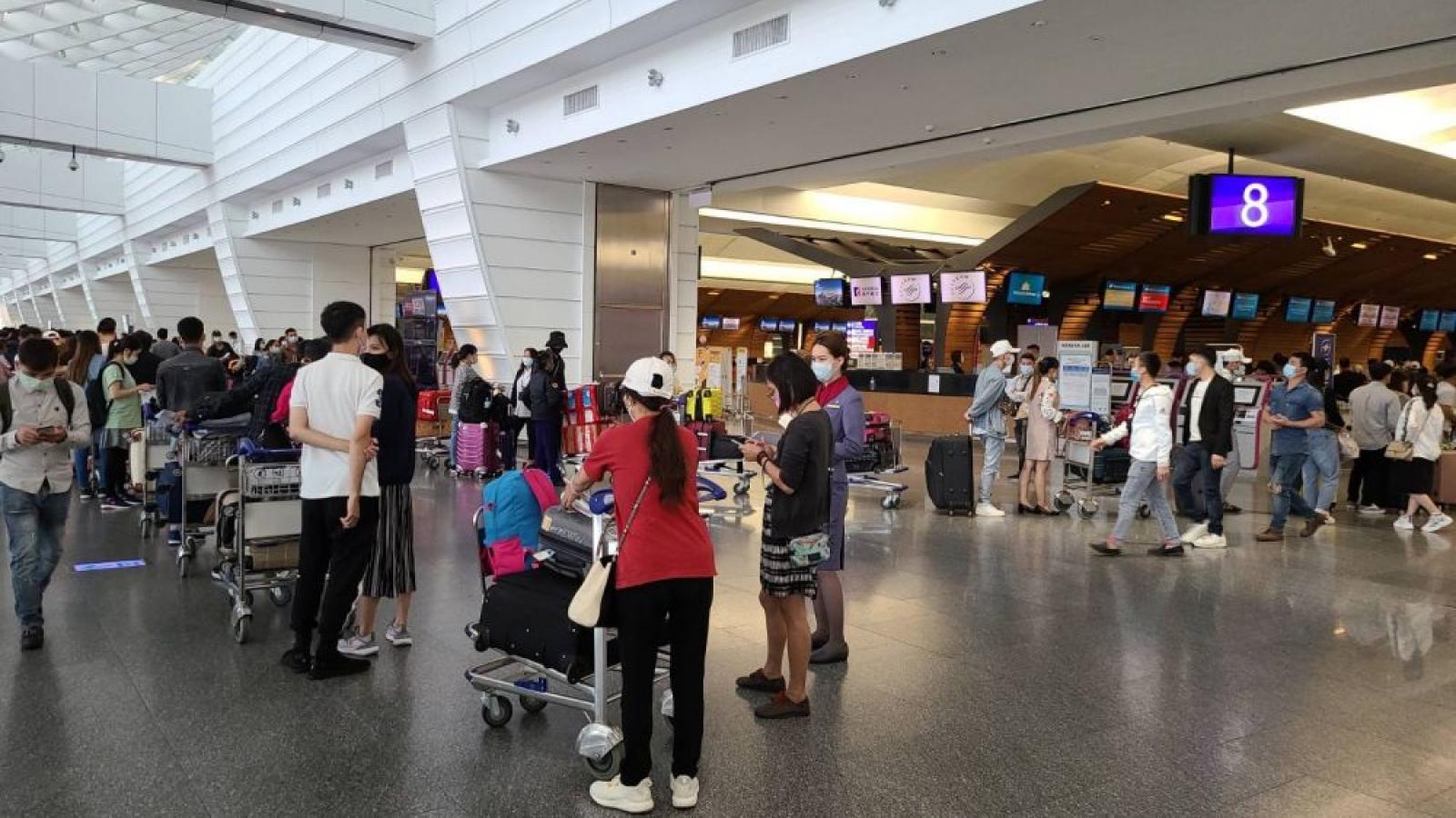 Hơn 340 công dân Việt Nam từ Đài Loan về nước an toàn