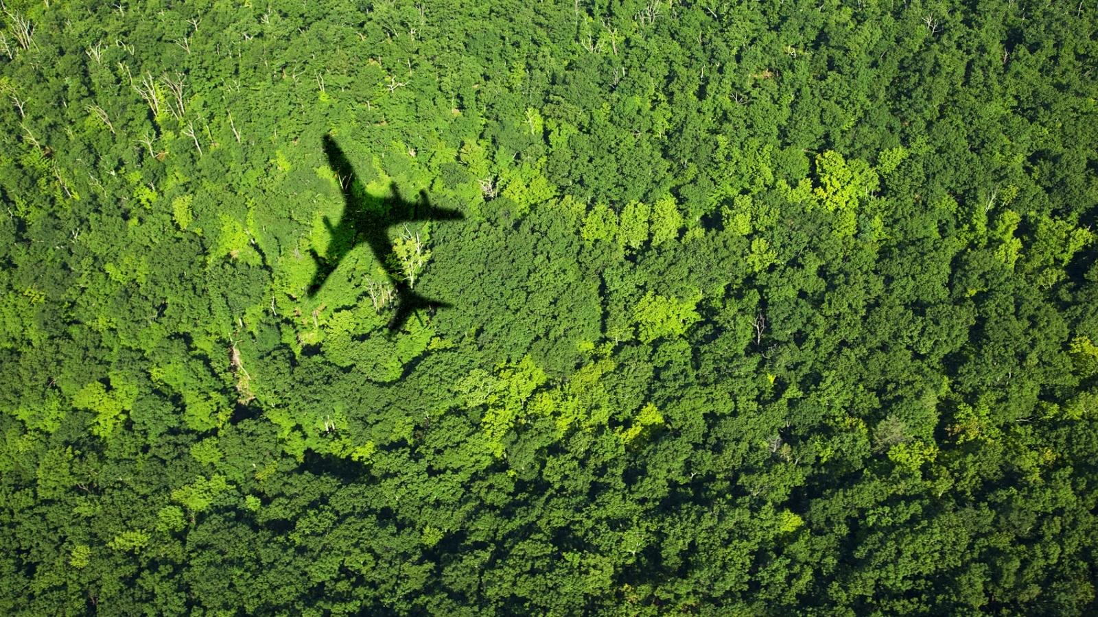 """Lời khuyên hữu ích để có chuyến du lịch """"xanh"""""""