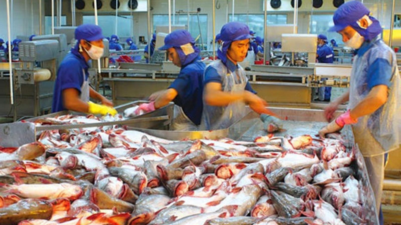 Tra fish exports eye US$1.5 billion turnover this year