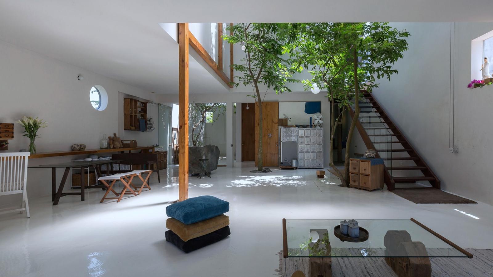 Nhà không bao giờ nóng nhờ hồ bơi và vườn xanh mát