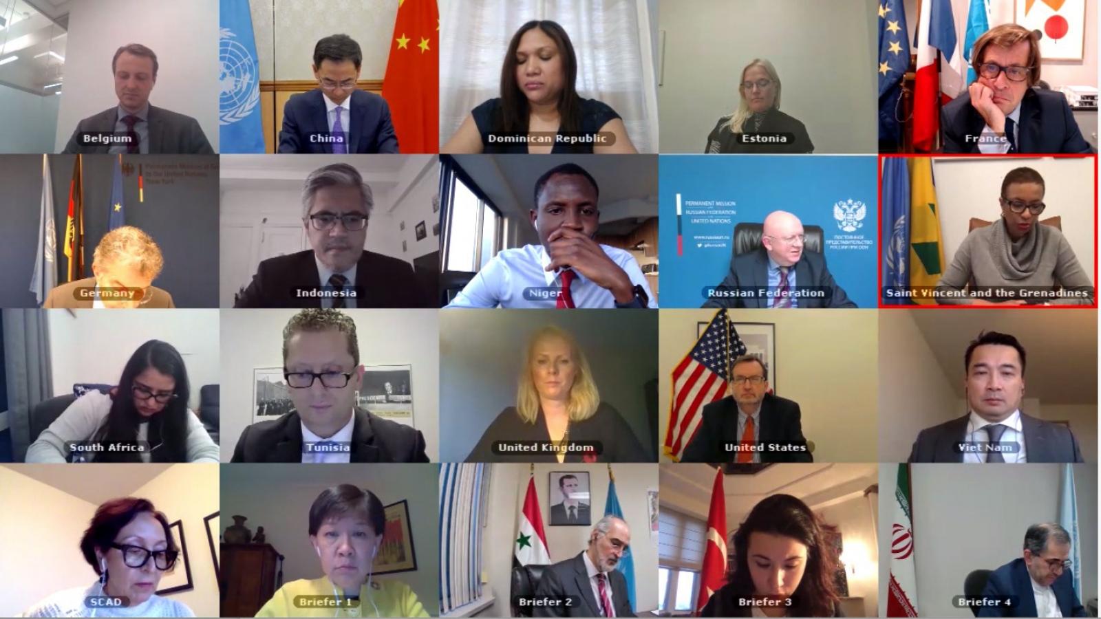 Hội đồng Bảo an LHQ thảo luận tình hình Bosnia-Herzegovina và về vũ khí hóa học ở Syria
