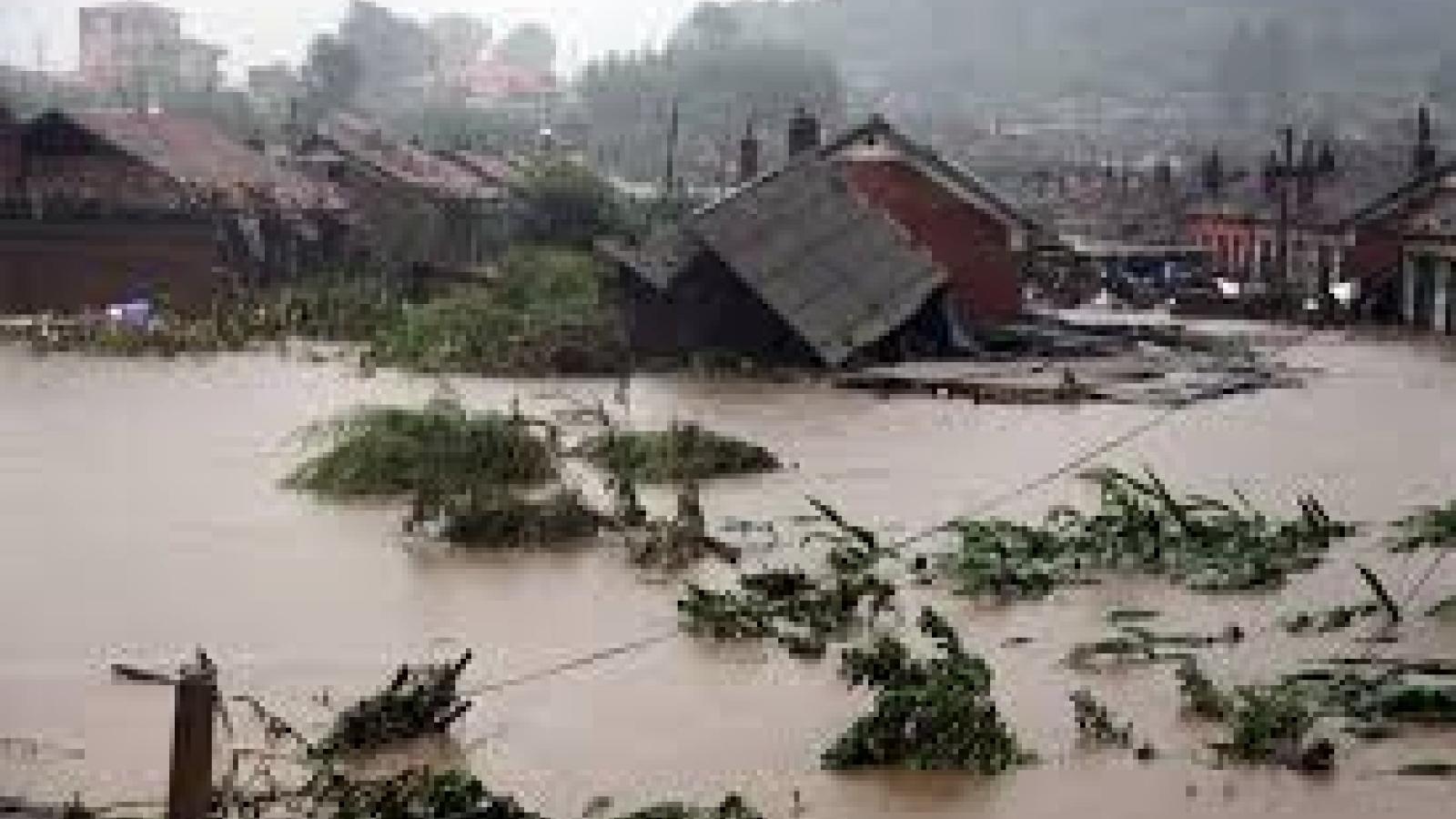 Các thủ tục cần thiết để được nhận tiền hỗ trợ nhà bị sập do bão lũ