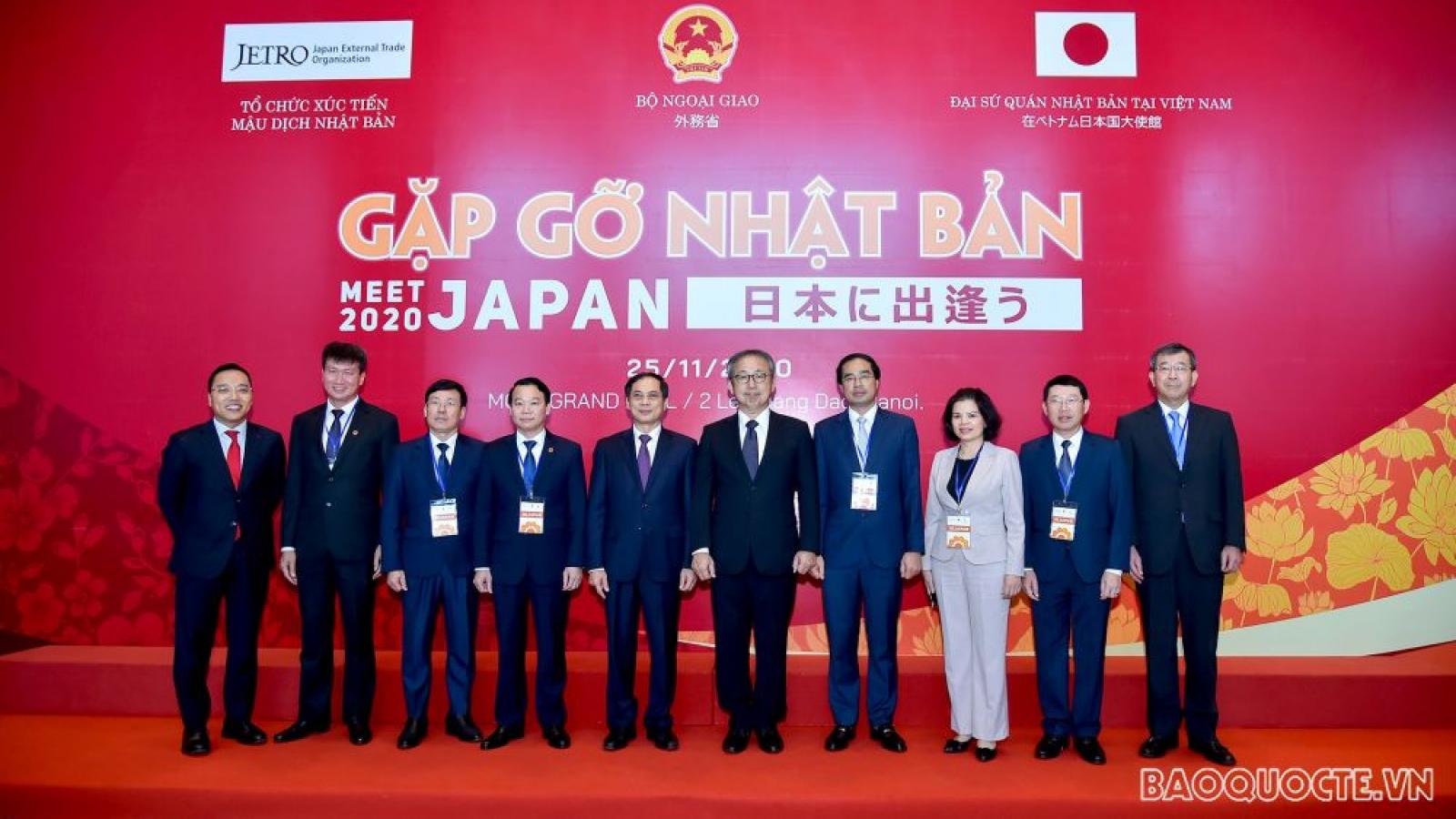 'Meet Japan 2020' offers development chance for Vietnam