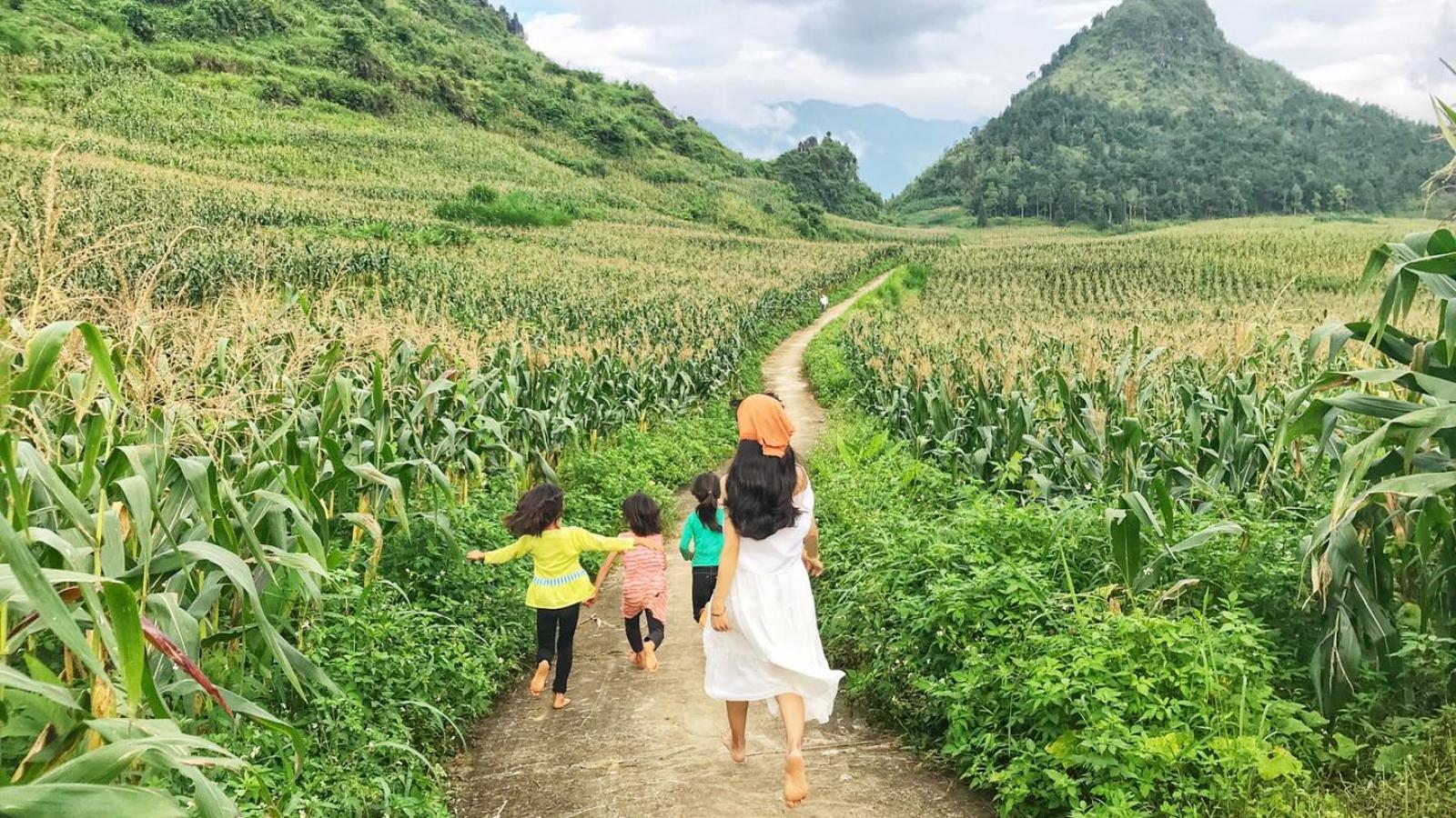 Rời thành phố chật chội để sốngbình yên tạiNặmĐăm, Hà Giang