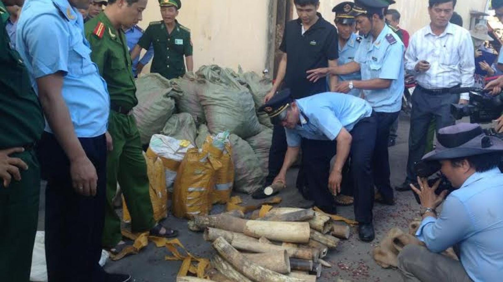 Hải quan tăng cường chống buôn lậu động vật