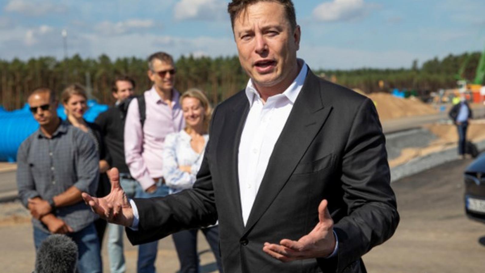 CEO Elon Musk từng chào bán Tesla cho Apple nhưng bị Tim Cook từ chối