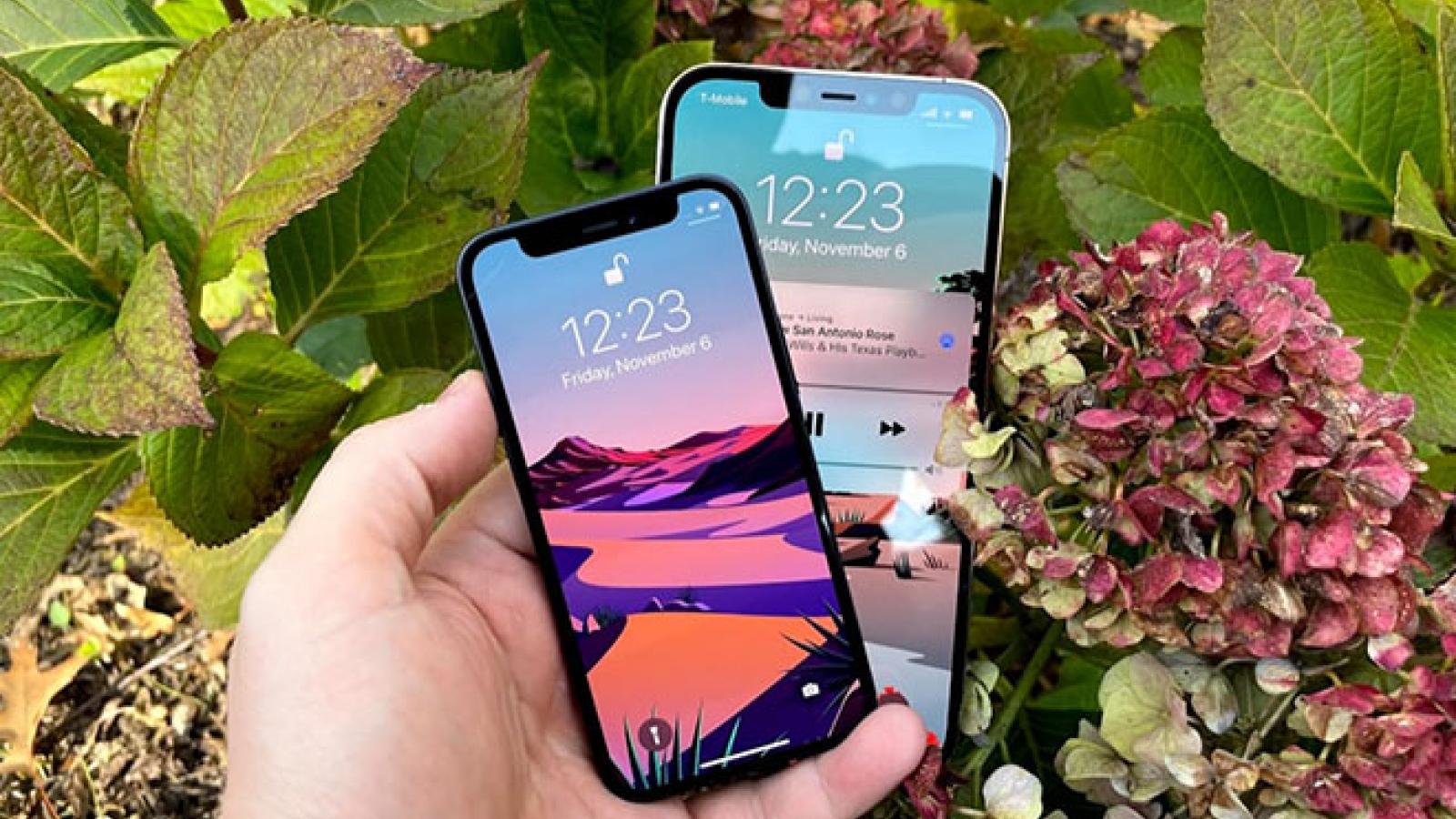 """Đi tìm nơi """"chôn nhau cắt rốn"""" các bộ phận iPhone 12"""