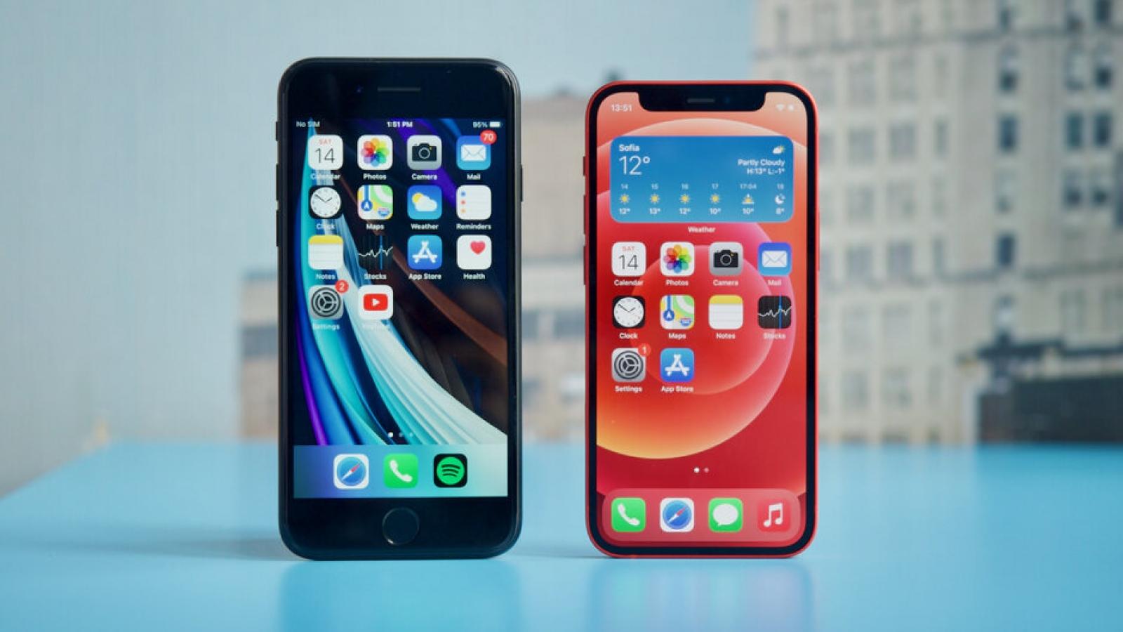 Chọn iPhone 12 mini hay iPhone SE 2020 khi chênh nhau 9 triệu đồng?