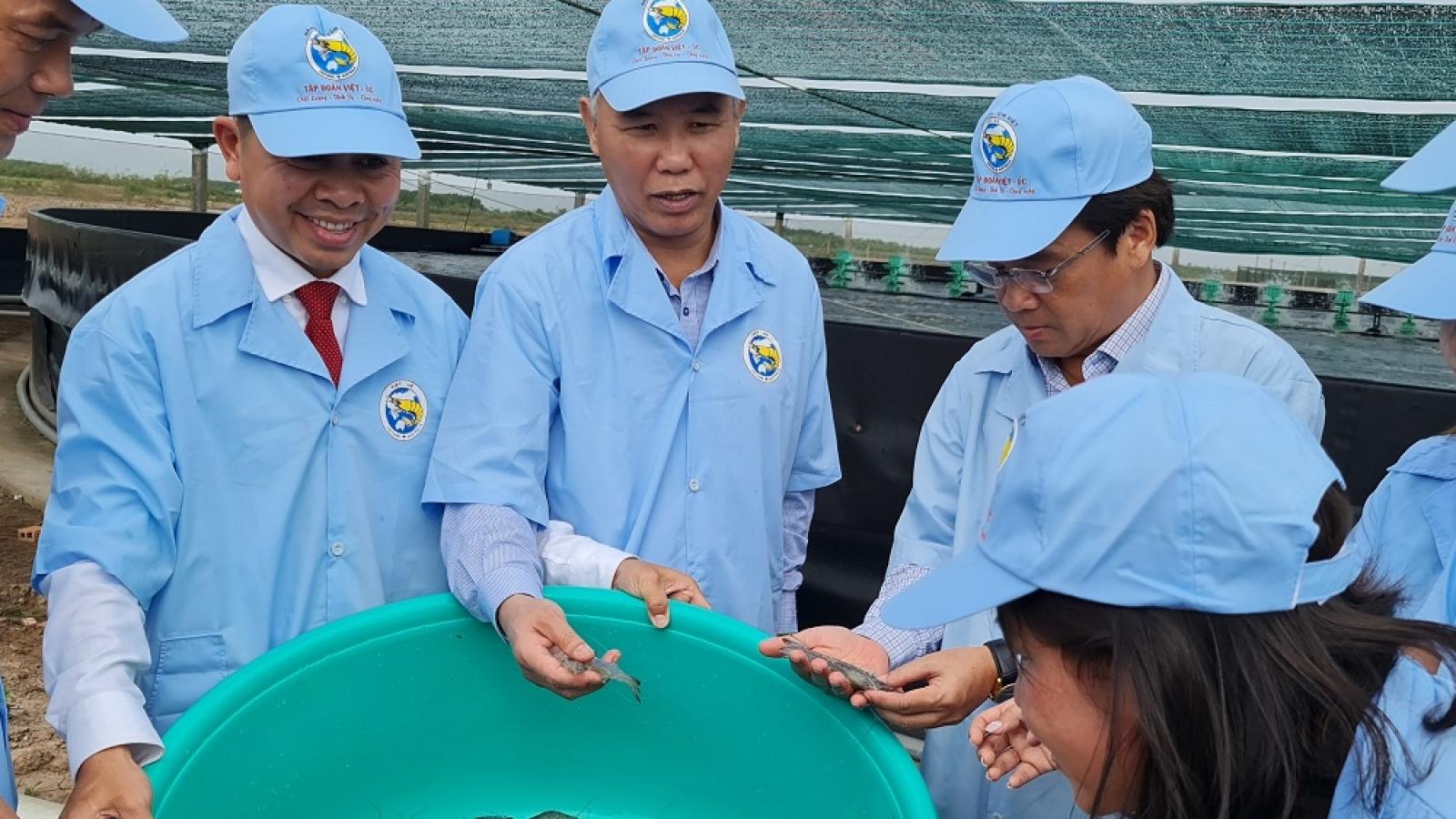 Tuyên truyền để ngư dân nâng cao ý thức đánh bắt trong vùng quy định