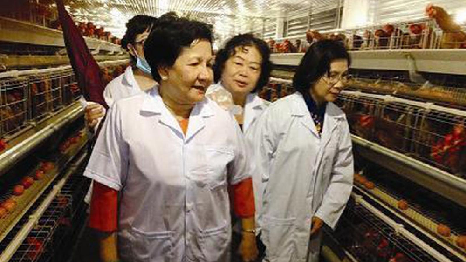 """Hơn 40 năm xây dựng thương hiệu """"Ba Huân"""" trong ngành nông nghiệp"""