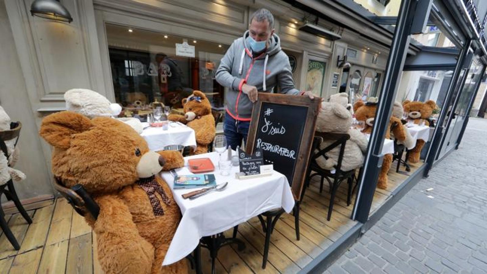 Ế ẩm vì Covid-19, nhà hàng ở Pháp thay thực khách bằng gấu Teddy