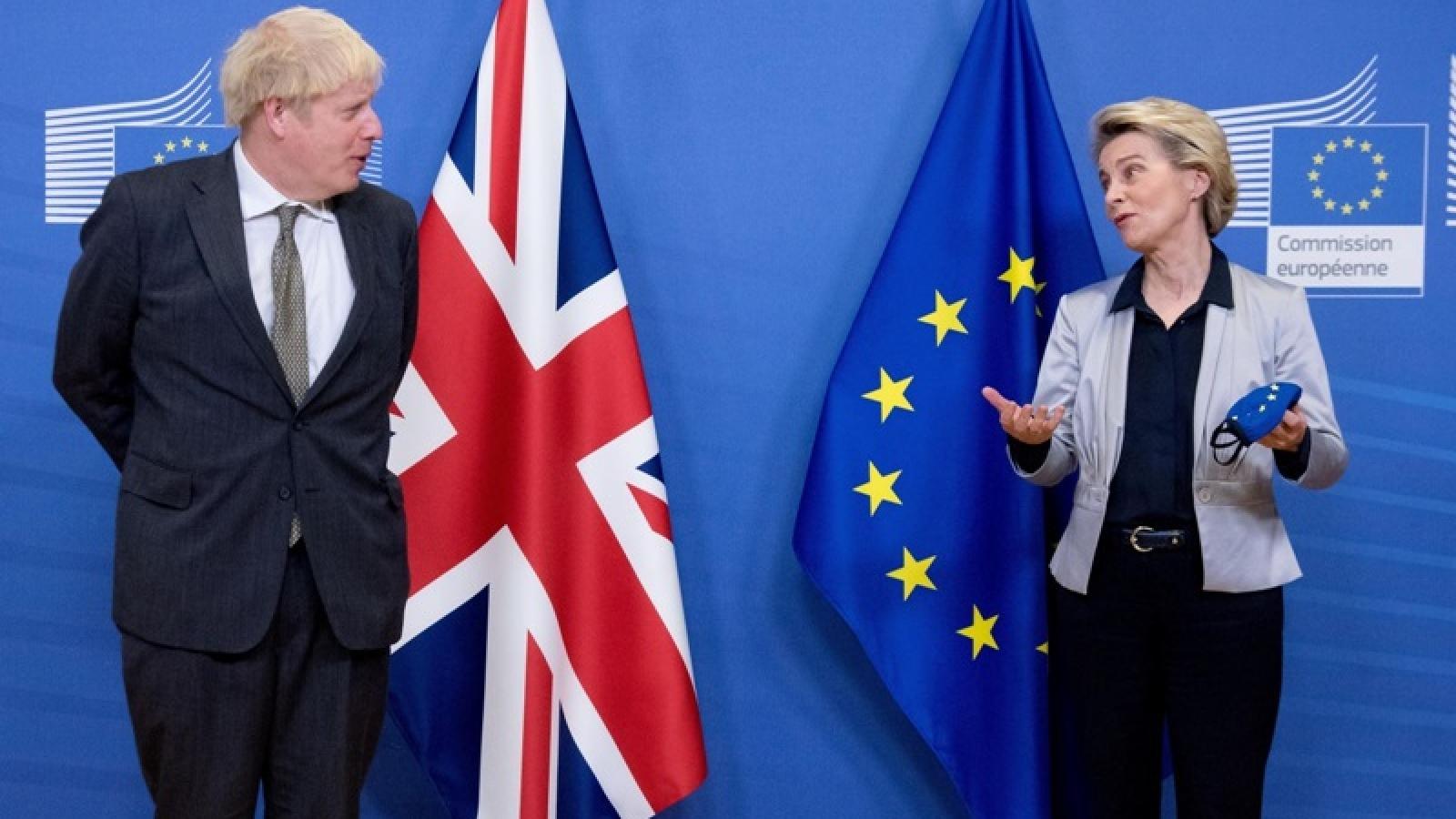 Động lực lớn nhất thúc đẩy Anh và EU hoàn tất đàm phán Brexit là gì?