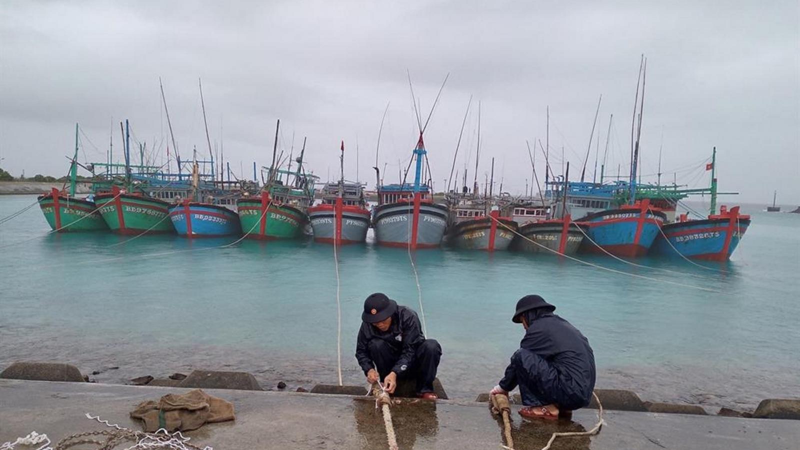 Hỗ trợ gần 600 ngư dân vào tránh, trú bão số 14 tại huyện đảo Trường Sa