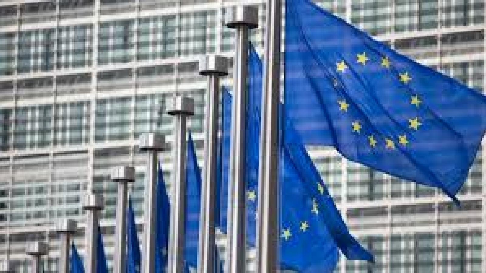 Ủy ban châu Âu phê duyệt viện trợ 15,3 triệu Euro cho các doanh nghiệp vận tải Bulgaria