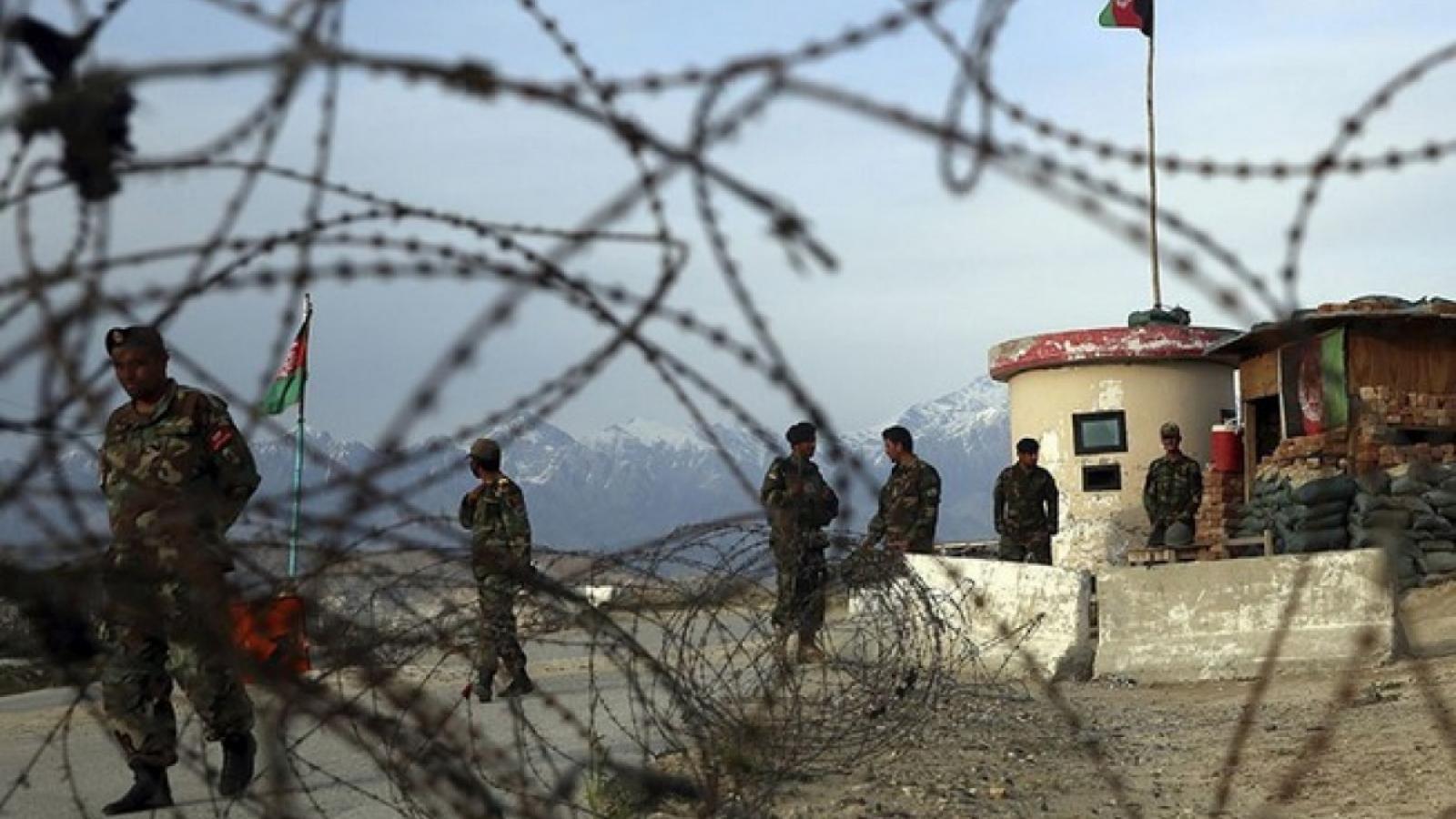 Afghanistan: Taliban có thể tiếp tục gây bạo lực dưới vỏ bọc mới