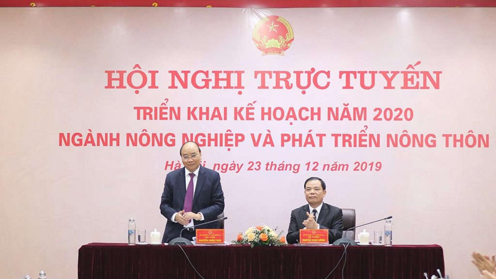 Thủ tướng dự hội nghị triển khai công tác ngành nông nghiệp