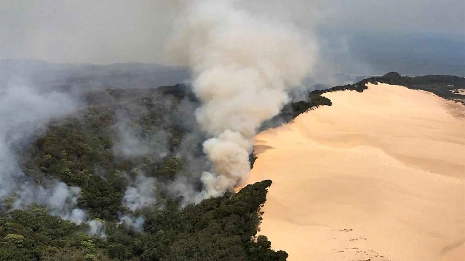 Cháy rừng đe dọa xóa sổ hòn đảo du lịch được xếp hạng di sản thế giới của Australia