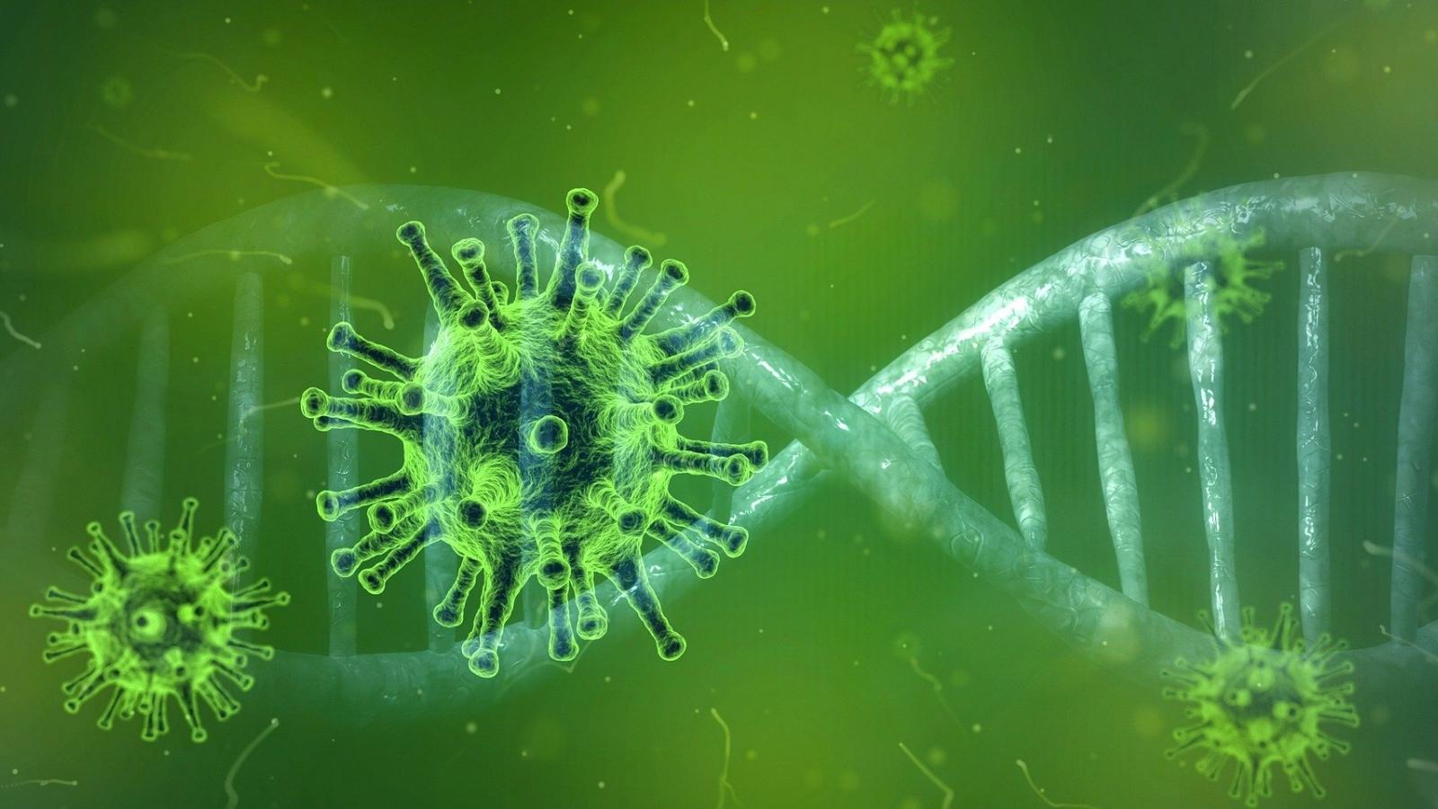 Biến chủng mới của SARS-CoV-2 có thể đã xuất hiện ở Séc và Bulgaria