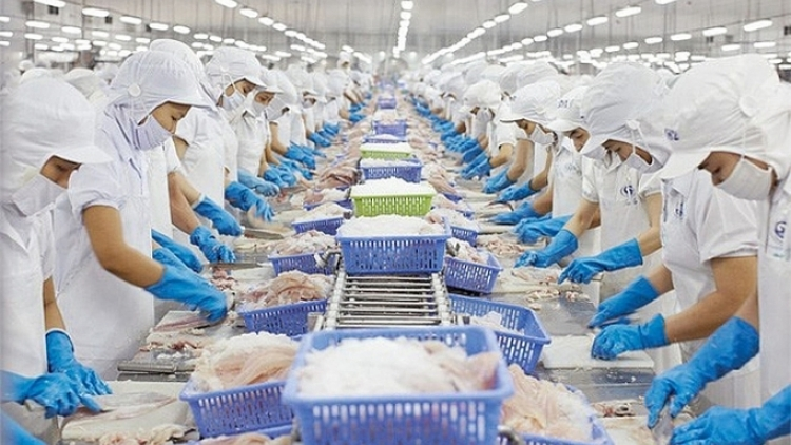 Vietnam enjoys trade surplus of US$3 billion with Mexico, Chile, and Peru