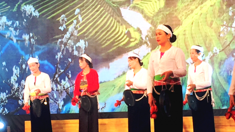 Hanoi to host cultural activities to celebrate new year 2021