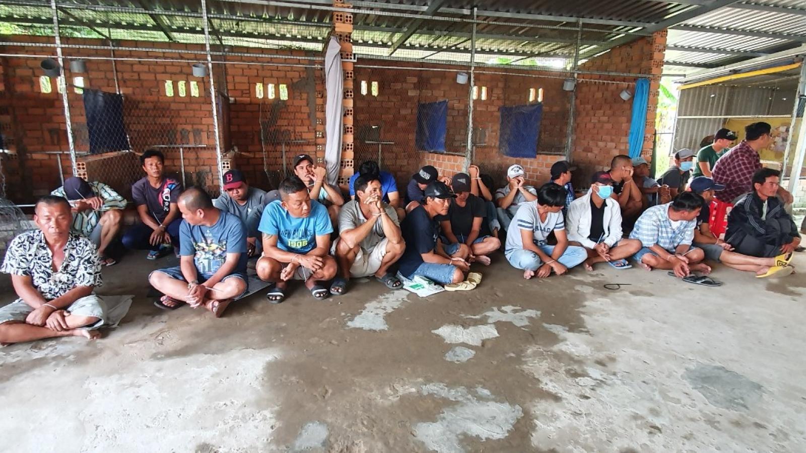 Tạm giữ 26 người tham giatụ điểm đá gà ăn tiền tại Kiên Giang