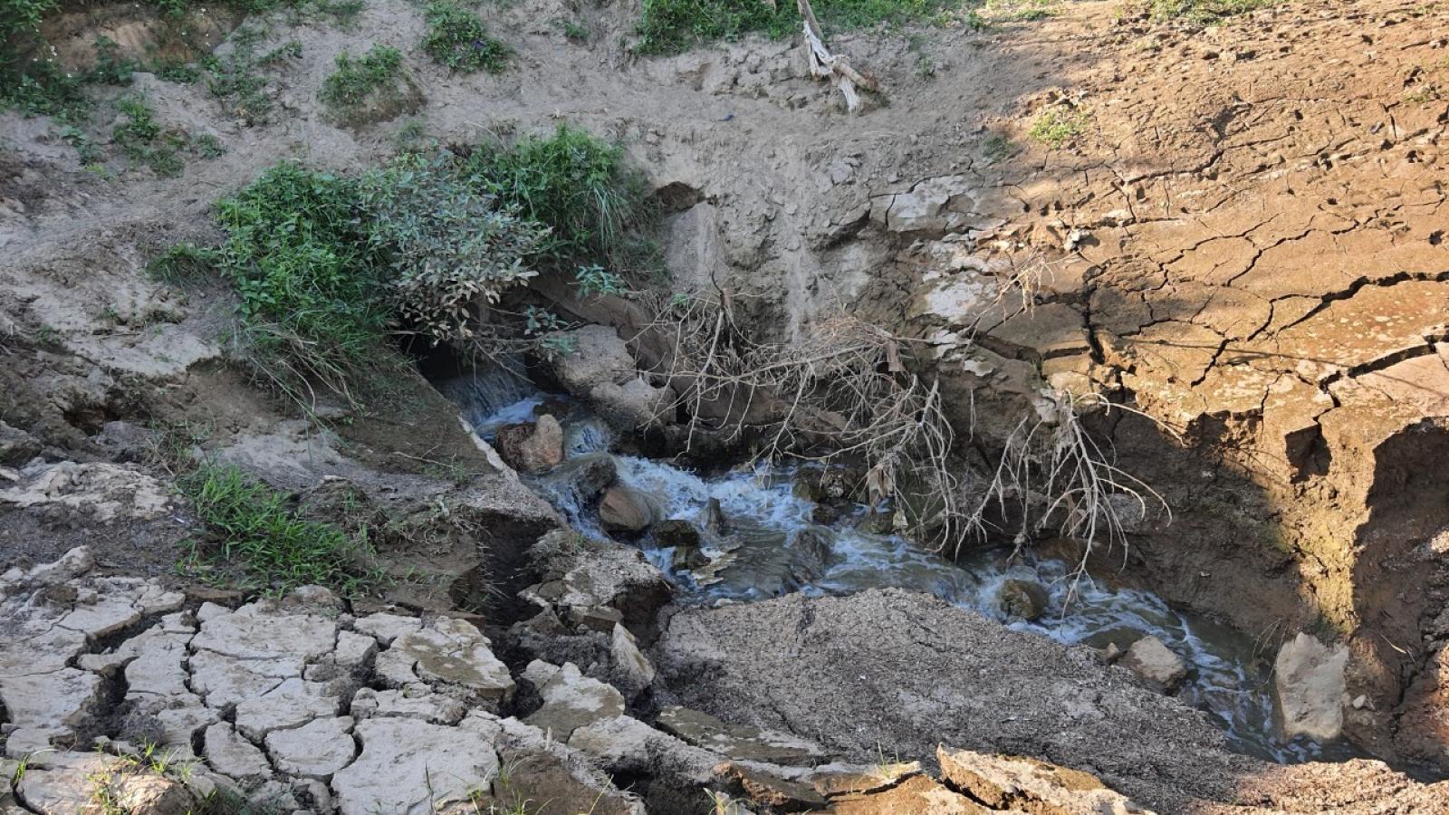 Xử lý Nhà máy tinh bột sắn xả thải ra sông Hồng