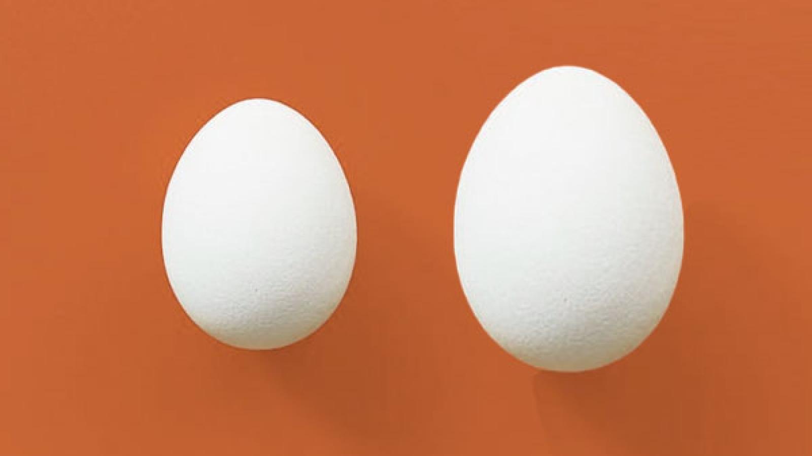 Lý do bạn nên chọn trứng vịt thay cho trứng gà