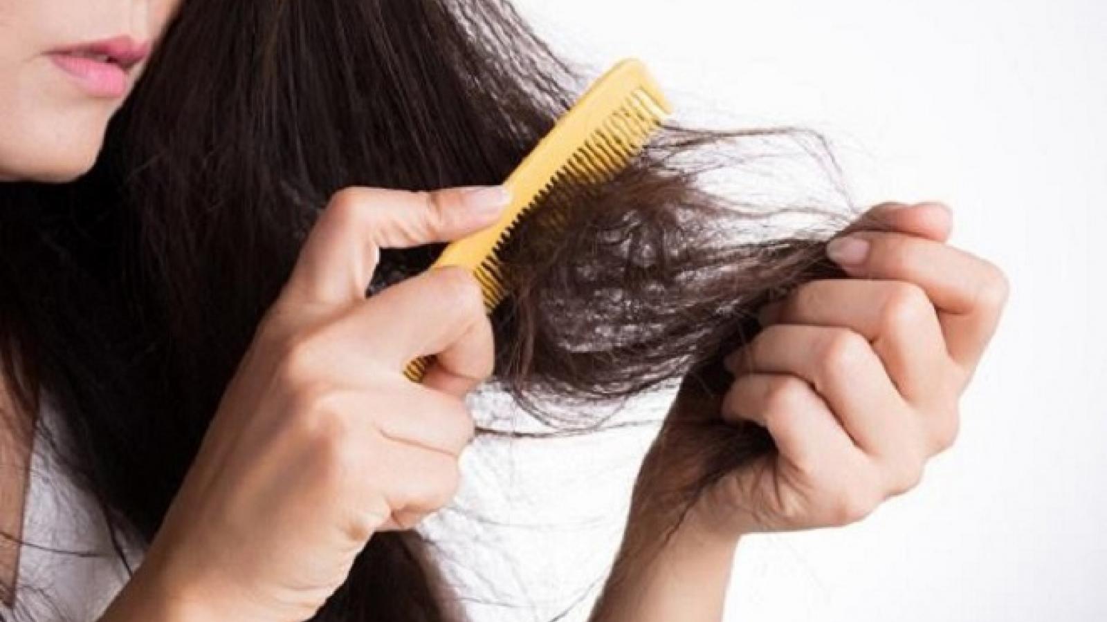 Những thói quen hàng ngày đang phá hủy mái tóc của bạn