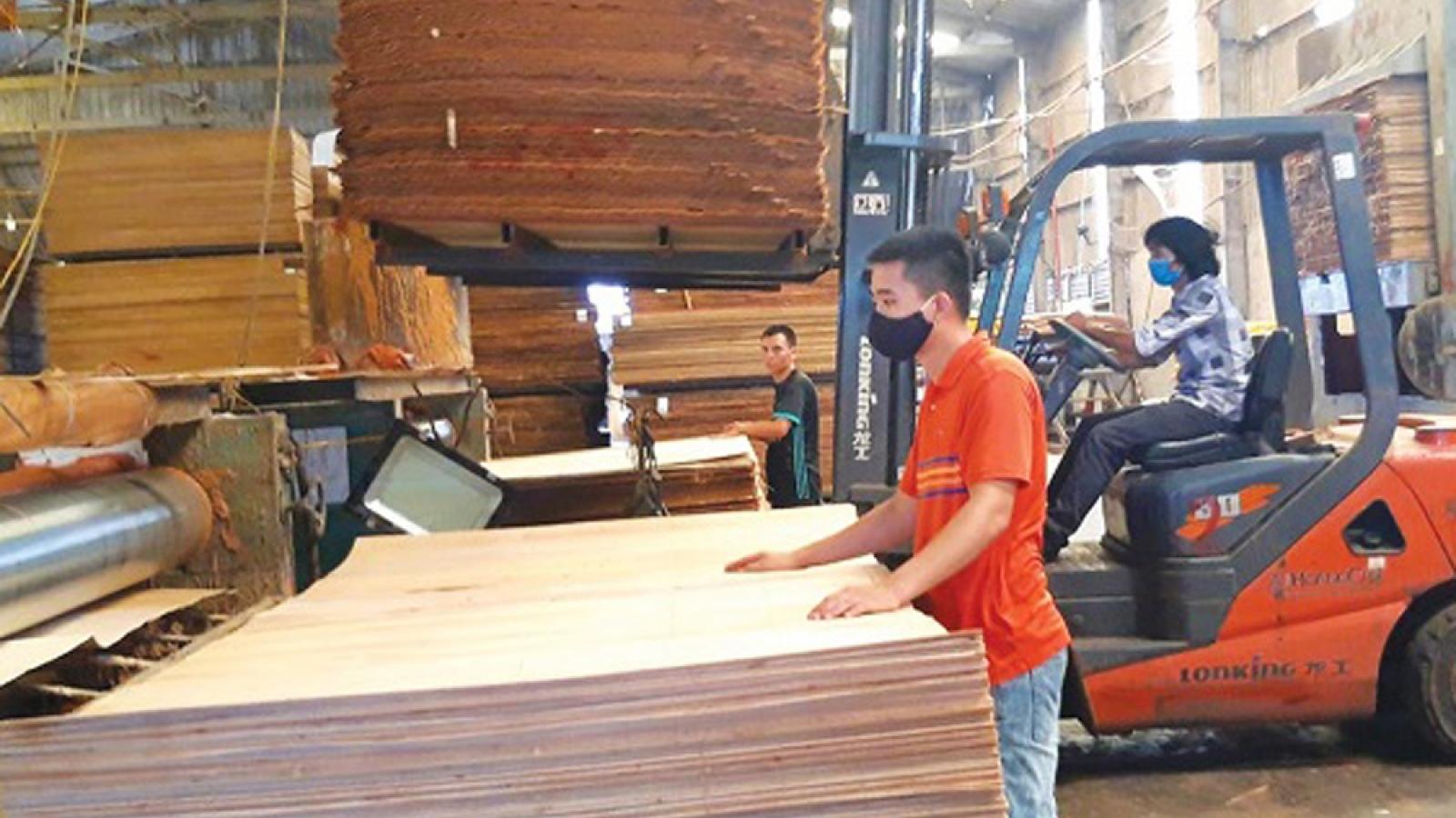 Giá trị xuất khẩu gỗ năm 2020 có thể cán mốc gần 12,5 tỷ USD