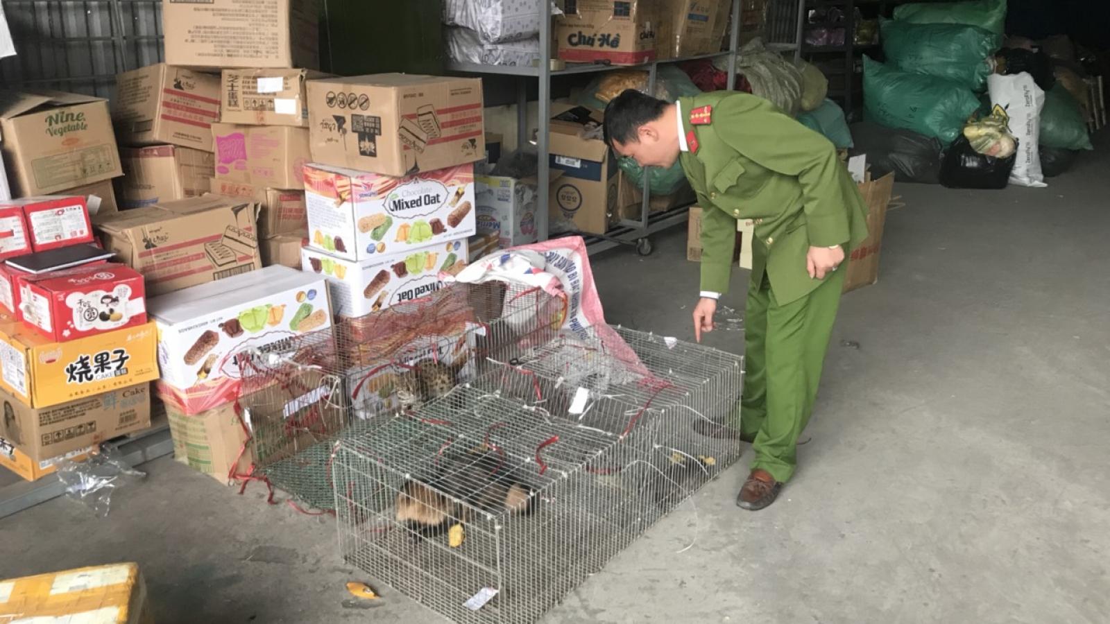 Quảng Ninh phát hiện xe ô tô vận chuyển động vật hoang dã