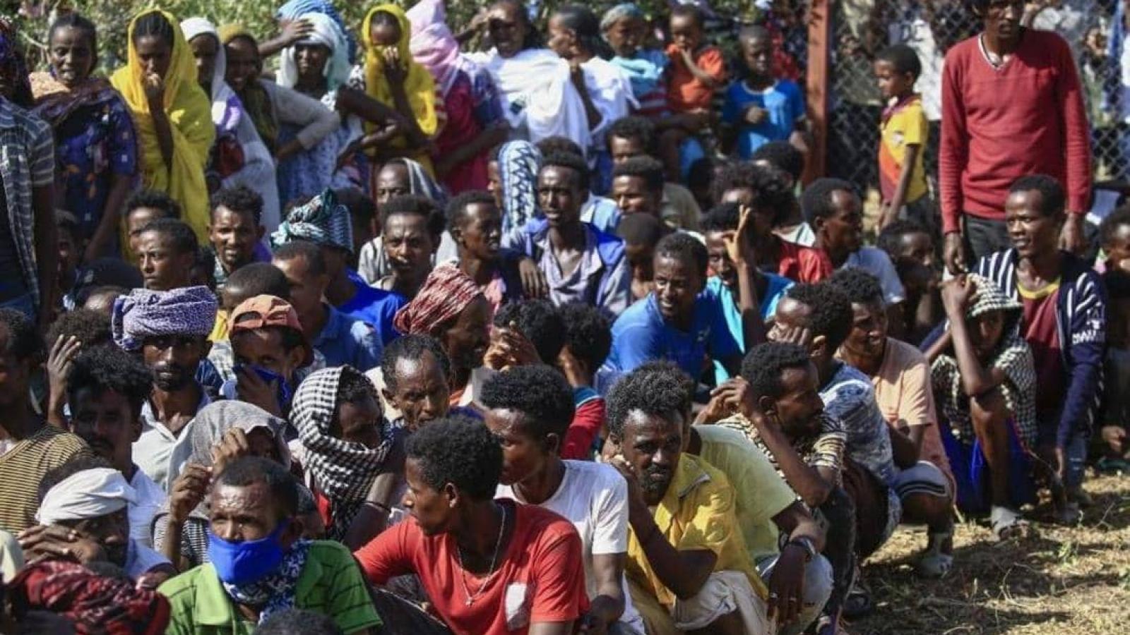 Sudan kiểm soát phần lớn khu vực biên giới với Ethiopia