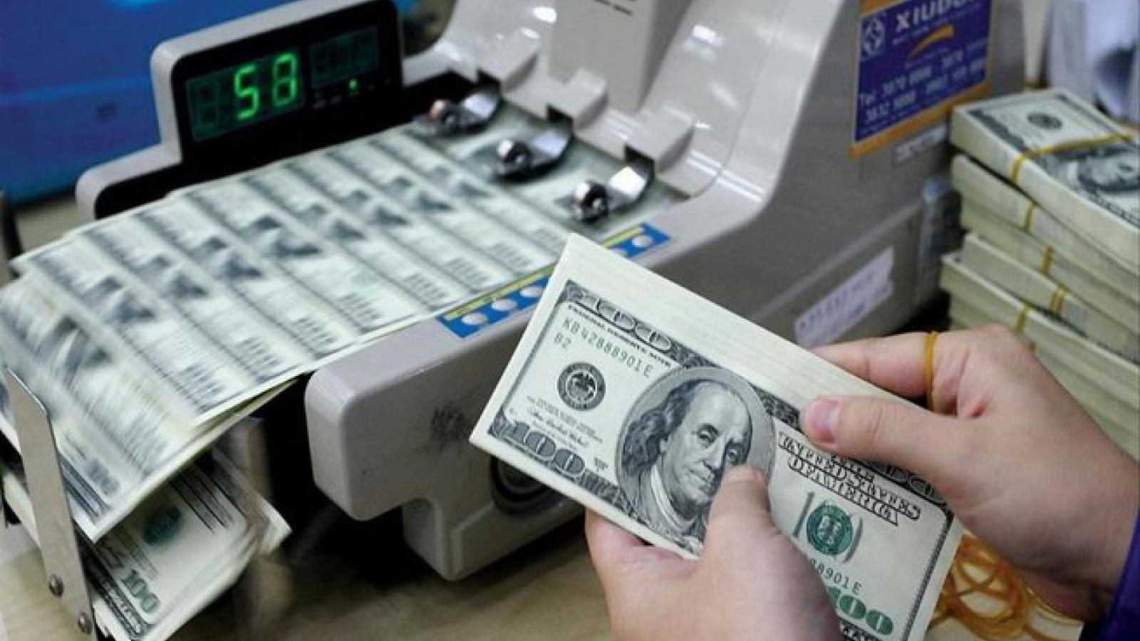 Cáo buộc thao túng tiền tệ: Sự lựa chọn nào của Việt Nam?