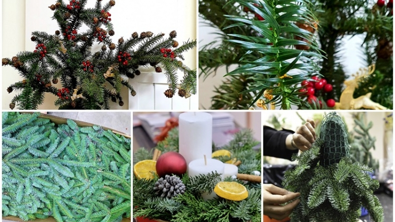Dân Hà thành tới tấp đặt mua cành thông tươi về trang trí Giáng sinh