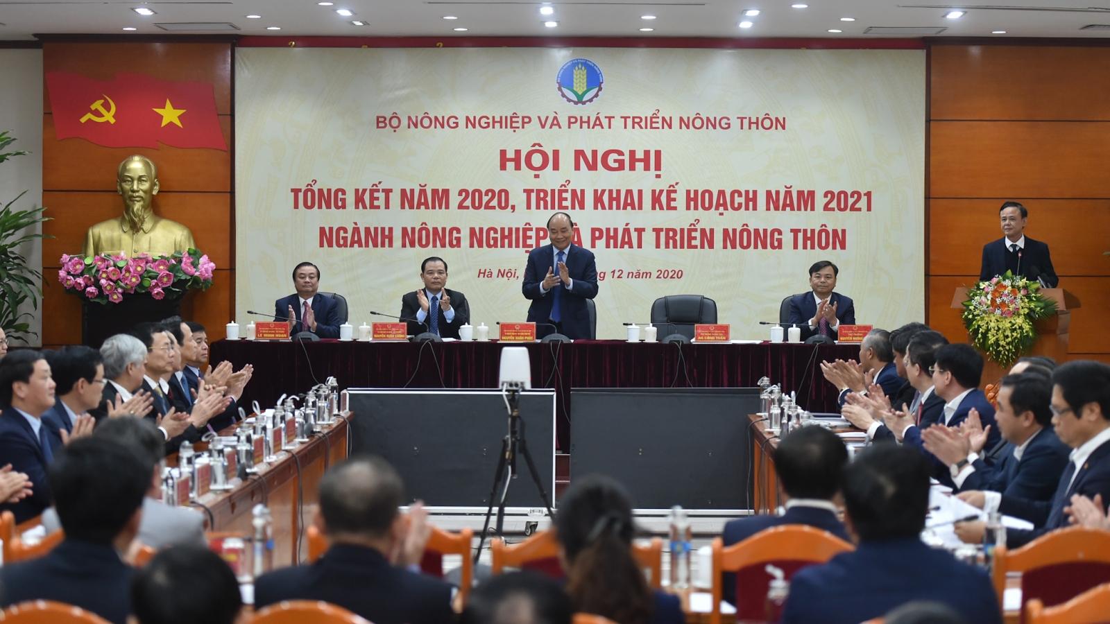 Thủ tướng: Không được để giá thịt lợn tăng cao dịp Tết Nguyên Đán 2021