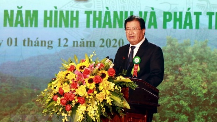 Forestry production expected to grow 5-5.5% annually in next five years