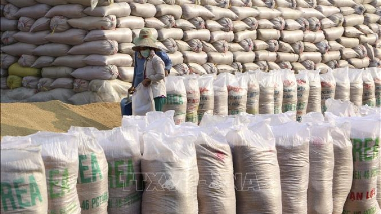 Vietnam presents 1,000 tonnes of rice to flood-hit people in Laos