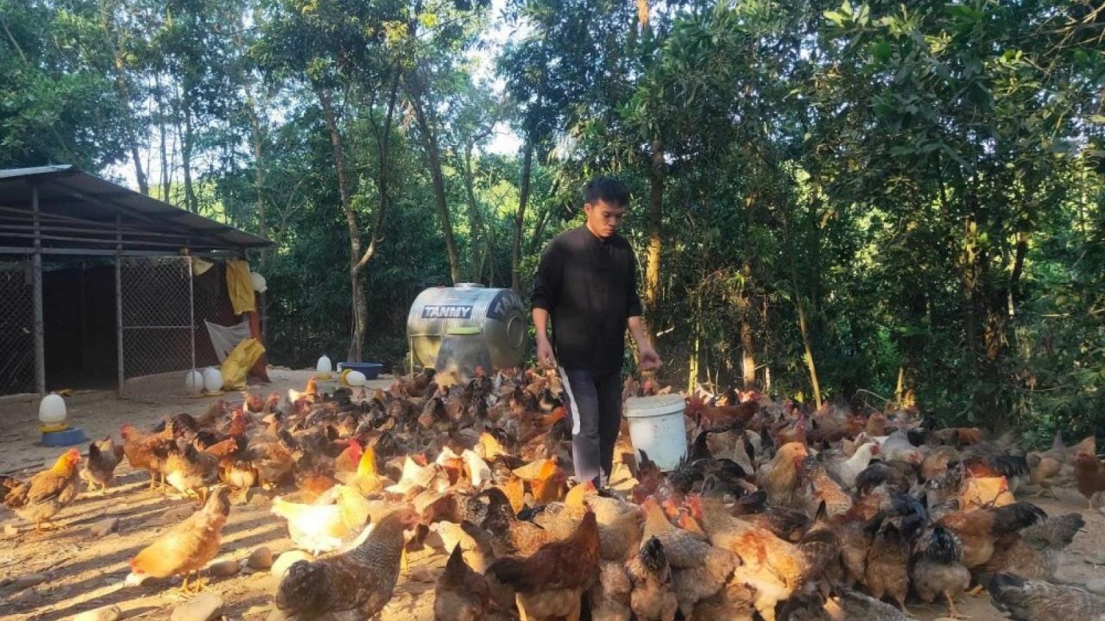 Từ tay không khởi nghiệp đến nông dân tiêu biểu nhận giải thưởng Lương Định Của