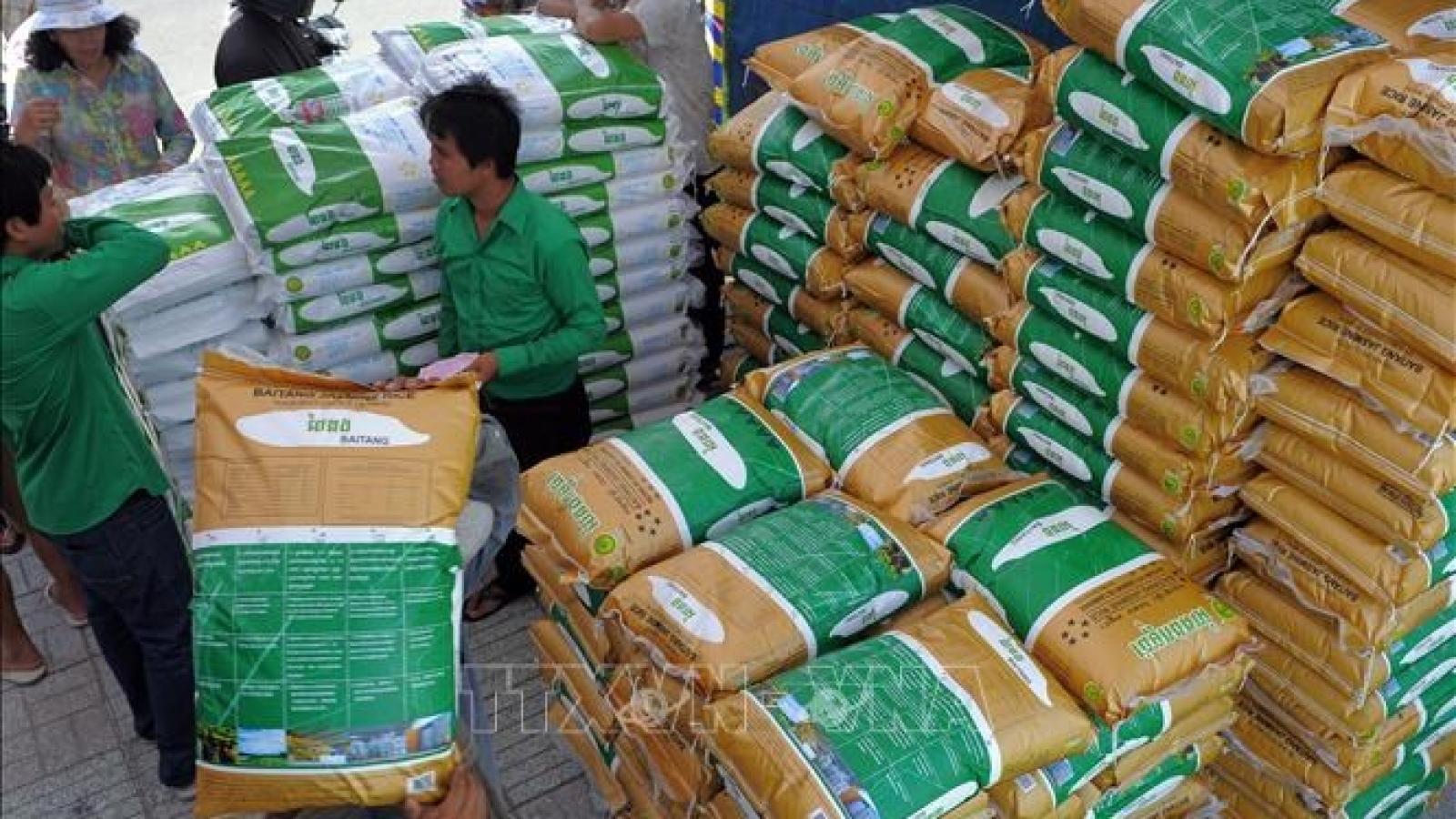 Sản lượng gạo xuất khẩu của Campuchia tăng mạnh