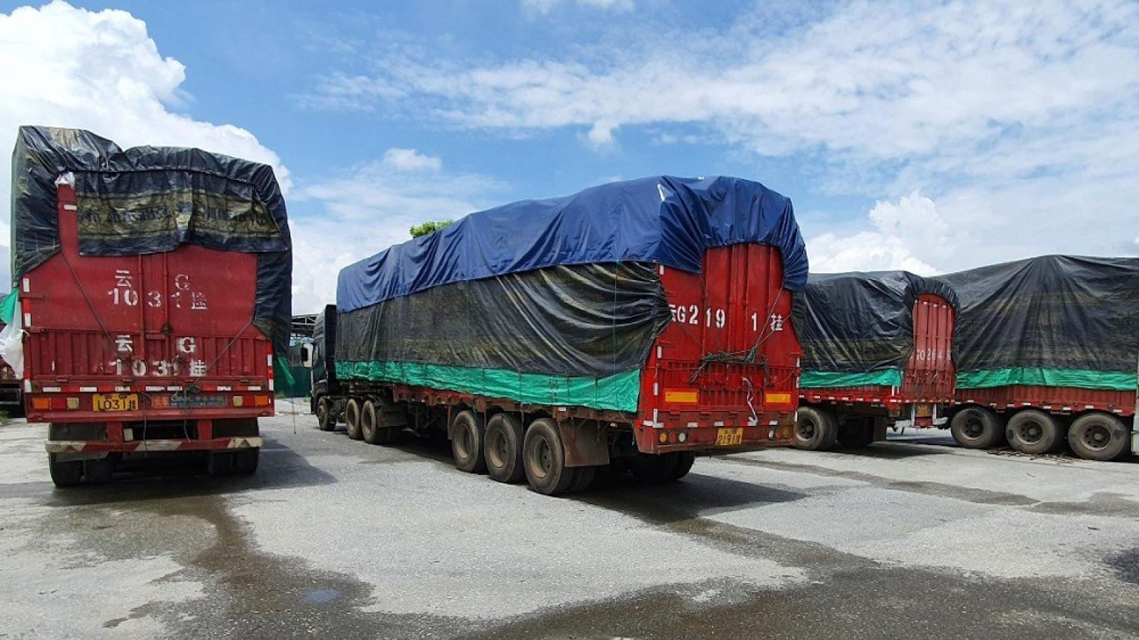 Tạm giữ 100 xe hàng vô chủ ở cửa khẩu Kim Thành (Lào Cai) sau hơn 4 tháng kiểm đếm