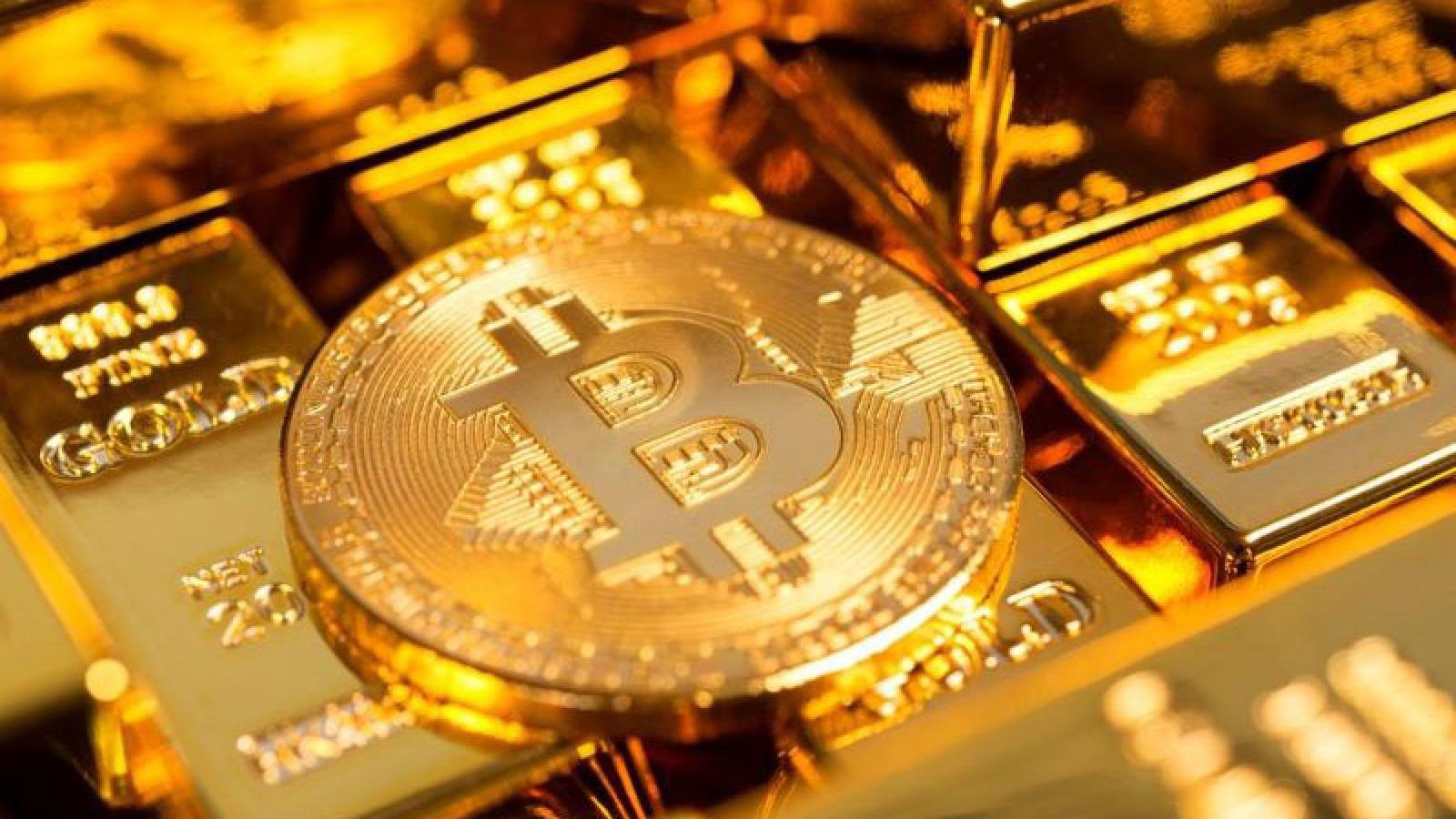 Tiểu sử trên Twitter của Elon Musk khiến giá bitcoin tăng đột biến