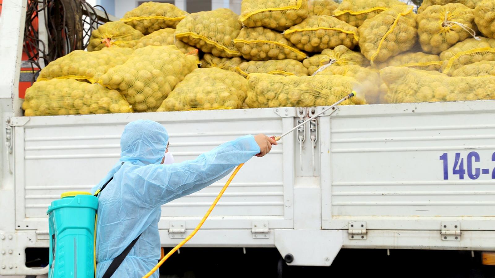 Quảng Ninh hỗ trợ tiêu thụ nông sản cho nông dân vùng bị phong tỏa