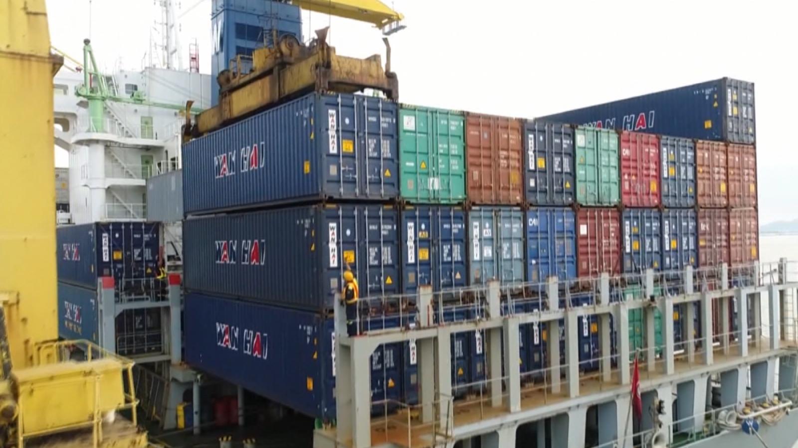 """Không thể trông vào 3.000 container vô chủ để """"lấy nguồn"""" container rỗng cho xuất khẩu"""