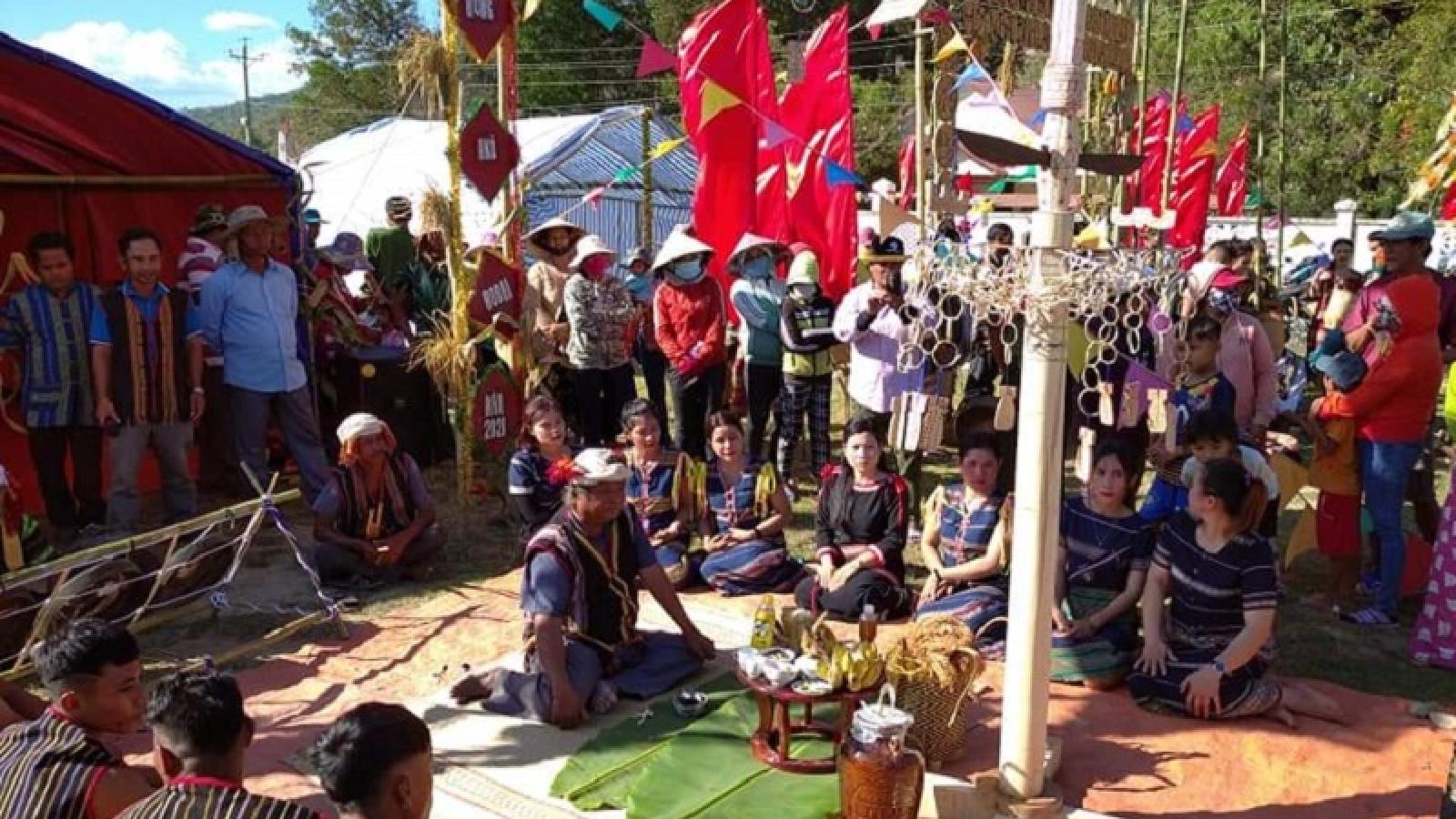 Tưng bừng Tết Đầu lúa vùng cao Bình Thuận