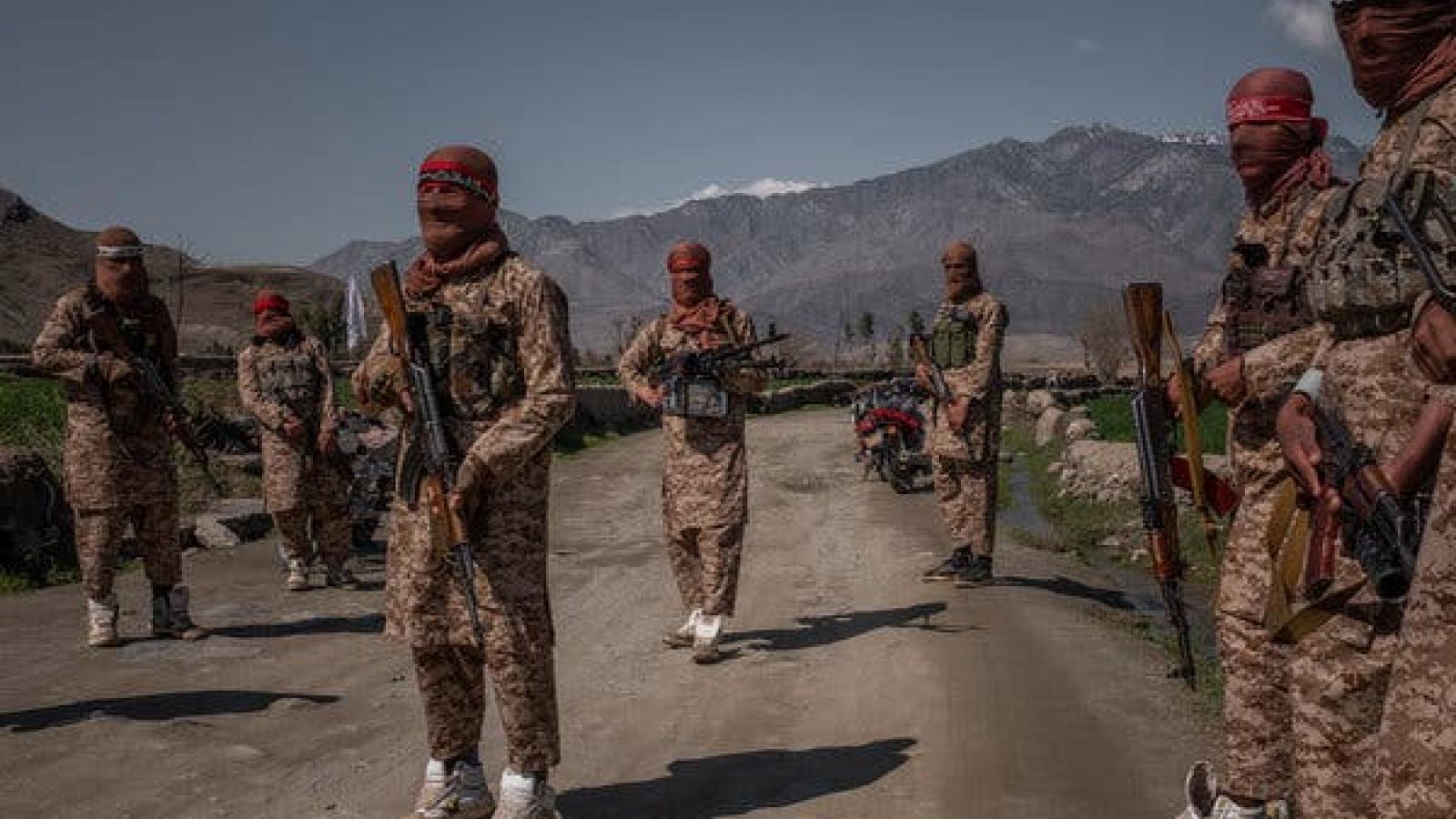 Afghanistan tuyên bố phá vỡ âm mưu ám sát đại diện ngoại giao Mỹcủa IS