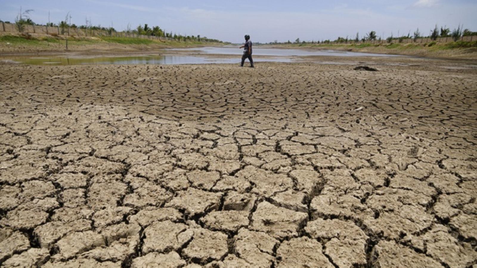 Việt Nam sẽ đối mặt với tình trạng hạn mặn gay gắt trong năm 2021